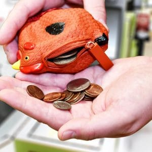 coin purse change