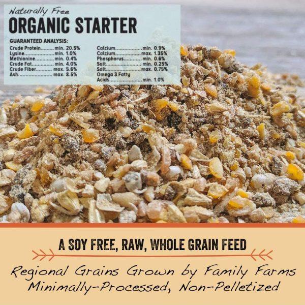 chick starter organic