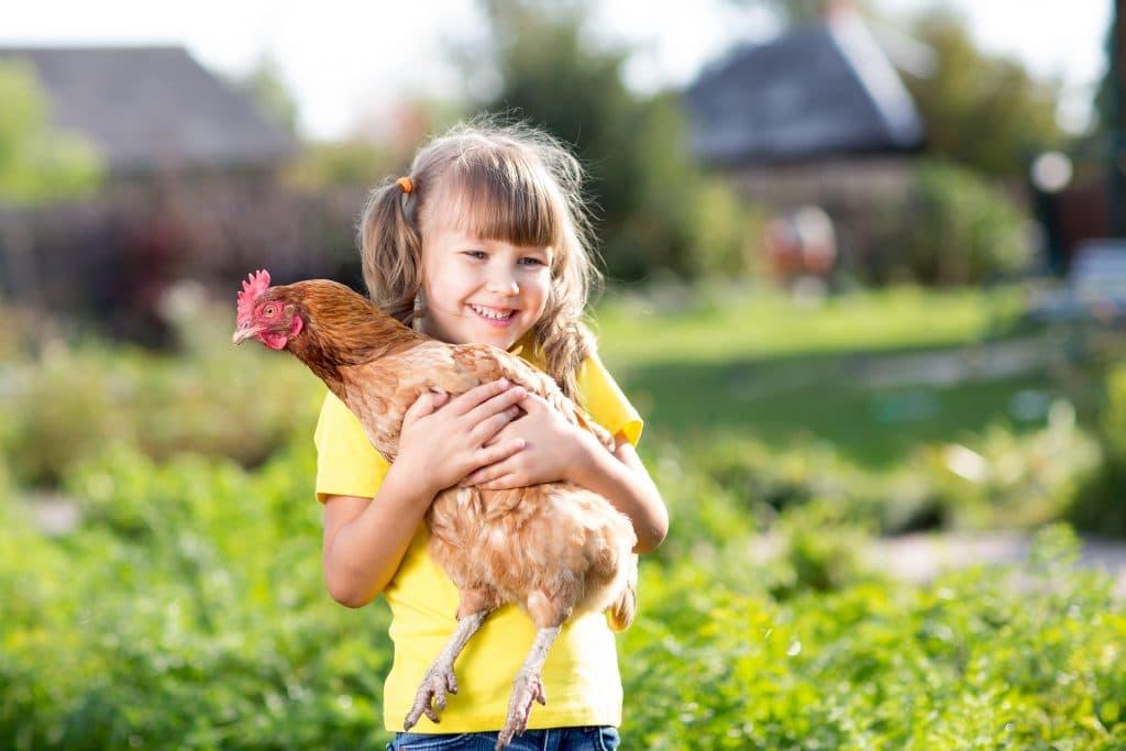 girl with chicken hen